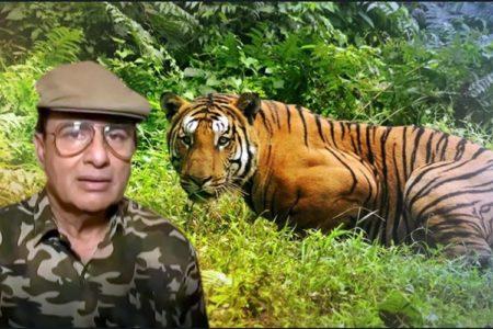Killing tigress- Avni  violation of SC order